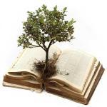 Estudo ambiental